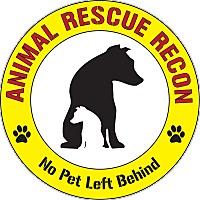 Adopt A Pet :: Frank - Oakley, CA