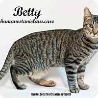 Adopt A Pet :: Betty - Modesto, CA