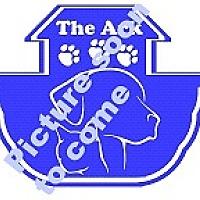 Adopt A Pet :: Samson - Huntsville, AL