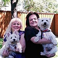 Adopt A Pet :: Sully Adopted - Carrollton, TX