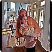 Adopt A Pet :: Jack - Long Beach, NY