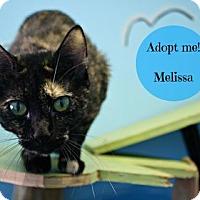 Adopt A Pet :: Melissa - West Des Moines, IA