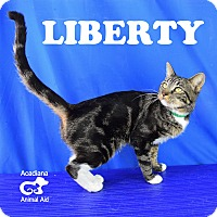 Adopt A Pet :: Liberty - Carencro, LA