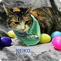 Adopt A Pet :: keiko - Muskegon, MI