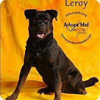 Adopt A Pet :: Leroy - Topeka, KS