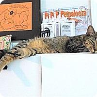 Adopt A Pet :: Mema - Victor, NY
