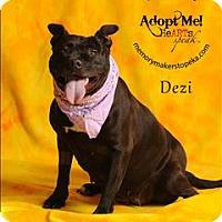 Adopt A Pet :: Dezi - Topeka, KS