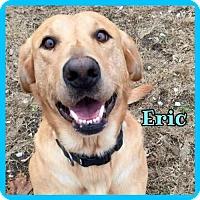 Adopt A Pet :: Eric - Jasper, IN