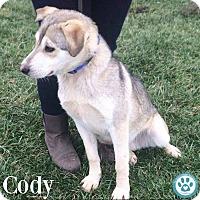 Adopt A Pet :: Cody - Kimberton, PA