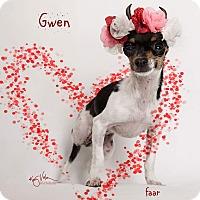 Adopt A Pet :: Gwen - Riverside, CA