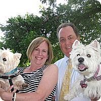 Adopt A Pet :: Max 3 Adopted - Carrollton, TX