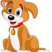 Adopt A Pet :: FOSTER A Pup & Save a Life! - Randolph, NJ