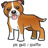 Pit Bull Terrier Mix Dog for adoption in San Bernardino, California - URGENT on 10/1 SAN BERNARDINO