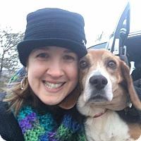 Adopt A Pet :: Lucky - cicero, NY