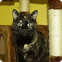 Adopt A Pet :: Daisy (aka Weena) - Mobile, AL