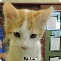 Adopt A Pet :: Kristoff - Slidell, LA