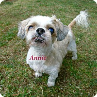 Adopt A Pet :: Annie - El Cajon, CA