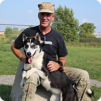 Adopt A Pet :: Diamond - Elyria, OH