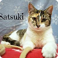 Adopt A Pet :: Satsuki - Melbourne, KY