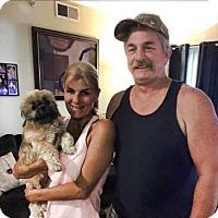 Adopt A Pet :: Nanigans - Sacramento, CA