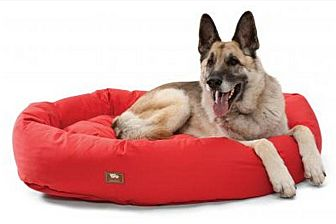 German Shepherd Dog Dog for adoption in Woodinville, Washington - DONATIONS: BEDS & TOYS