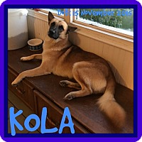 Adopt A Pet :: KOLA - White River Junction, VT