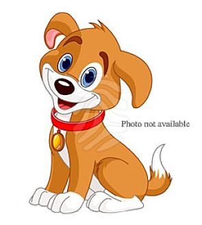Cocker Spaniel Mix Dog for adoption in San Bernardino, California - URGENT NOW!  San Bernardino