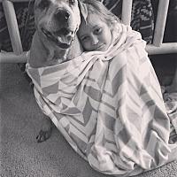 Pit Bull Terrier/Labrador Retriever Mix Dog for adoption in New Bern, North Carolina - Speck