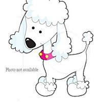 Adopt A Pet :: URGENT ON 11/3  San Bernardino - San Bernardino, CA