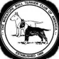 Adopt A Pet :: Miniature Bull Terriers - New York, NY