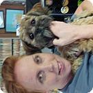 Adopt A Pet :: Tyler Hilton