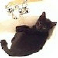 Adopt A Pet :: Corky - Vancouver, BC
