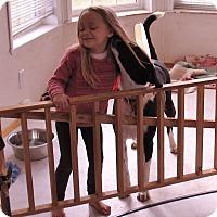 Adopt A Pet :: Nikki - Bellingham, WA
