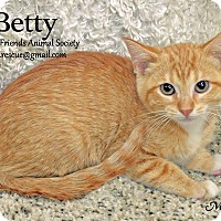 Adopt A Pet :: Betty - Ortonville, MI