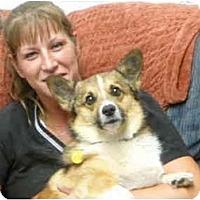 Adopt A Pet :: Wally - Inola, OK