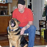 Adopt A Pet :: Alex - Salem, OR