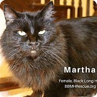 Adopt A Pet :: Martha - Temecula, CA