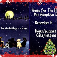 Adopt A Pet :: ADOPTION EVENT DEC 6-10TH - San Bernardino, CA