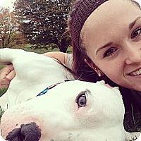 Adopt A Pet :: Kingston - Shavertown, PA