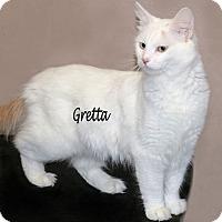 Adopt A Pet :: Gretta - Idaho Falls, ID