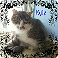 Adopt A Pet :: Kyle - New Richmond,, WI