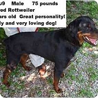 Adopt A Pet :: # 519-09 - RESCUED! - Zanesville, OH