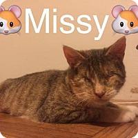 Adopt A Pet :: Missy - Breinigsville, PA