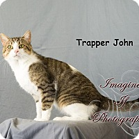 Adopt A Pet :: Trapper - Oklahoma City, OK