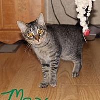 Adopt A Pet :: Max - Jesup, GA