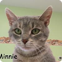 Adopt A Pet :: Minnie - Warren, PA