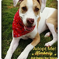 Adopt A Pet :: Kimberly - Queen Creek, AZ