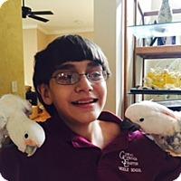 Adopt A Pet :: Baybe & Peaches - Tampa, FL