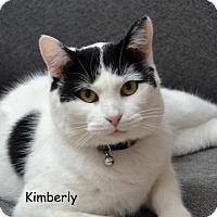 Adopt A Pet :: Kimberly - DuQuoin, IL