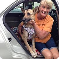 Adopt A Pet :: Byrdie - Quincy, IN
